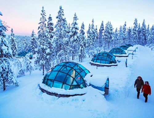 5 Things About Lapland Day Trips You Didn't Know