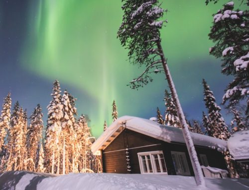 Muotka Wilderness Lodge Northern Lights Adventure