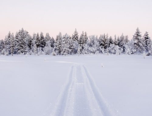 White Christmas 4 Night Lapland Holiday
