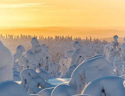 10 Magical Photos that will make you want to visit Lapland