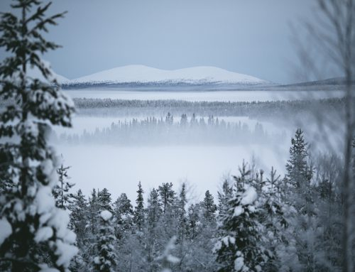 Visit Lapland in 2017 and Experience Total Tranquility