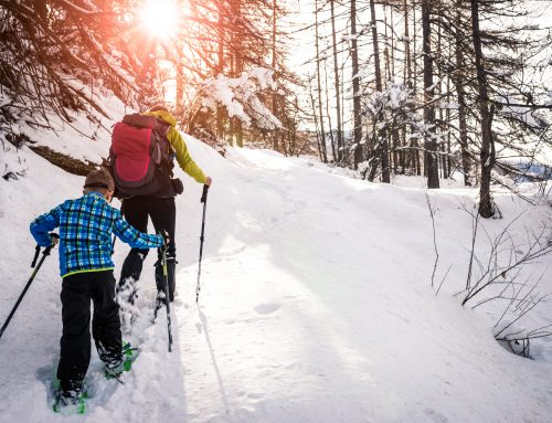 3 Reasons Snowshoeing is the Best Winter Activity